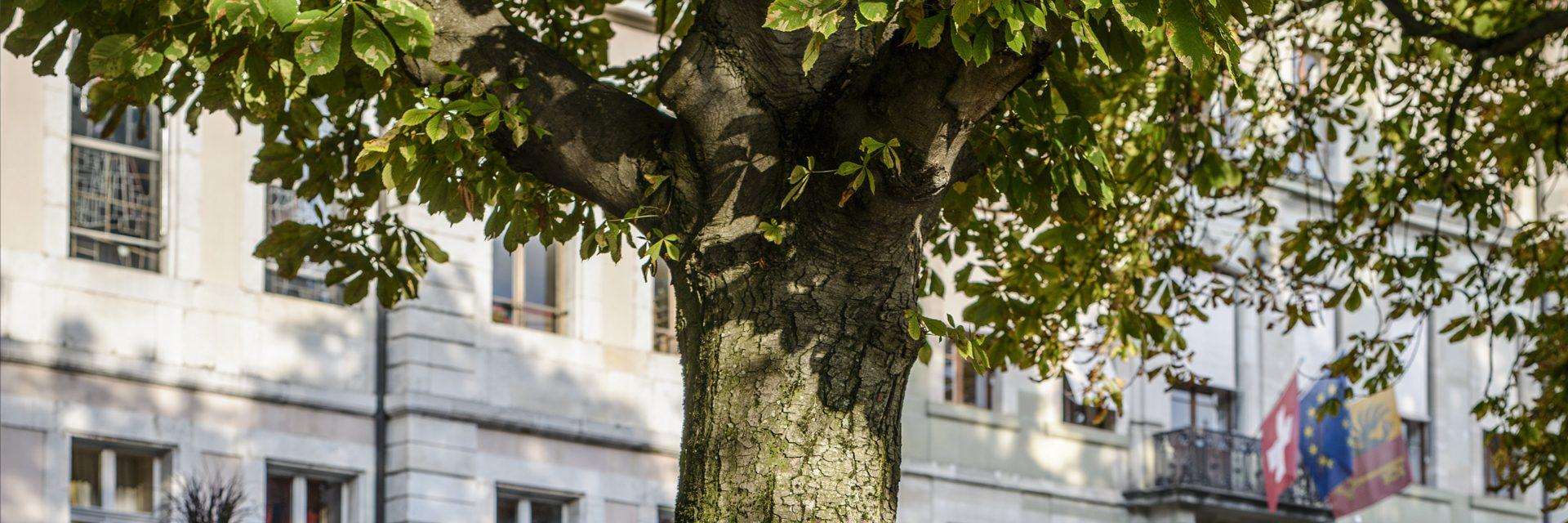 bandeau-1920x640-nature